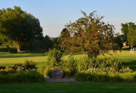 Spring creek country club cover picture