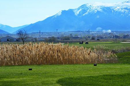 Cranefield Golf Course Cover Picture