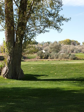Dinaland Golf Course Cover Picture