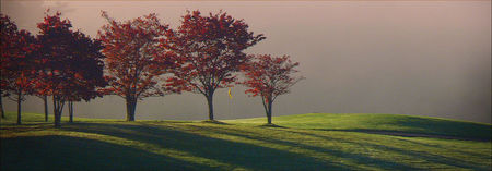 Old Mill Golf Club Cover Picture