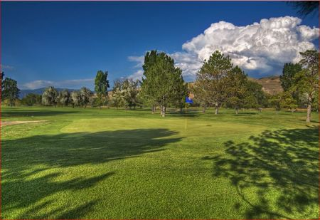 Rose park golf course cover picture