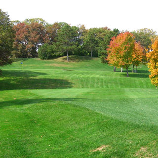 Amery golf club cover picture