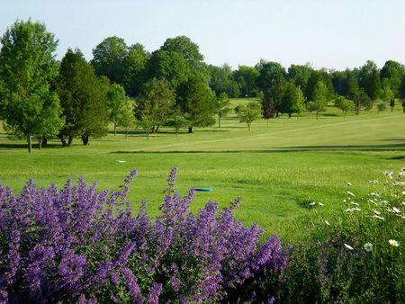 Bay Ridge Golf Course Cover