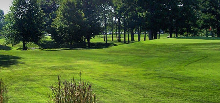 The Woods Golf Club Cover Picture