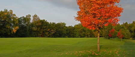 Trout Lake Golf and Country Club Cover Picture