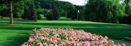 Mill Run Golf Course Cover