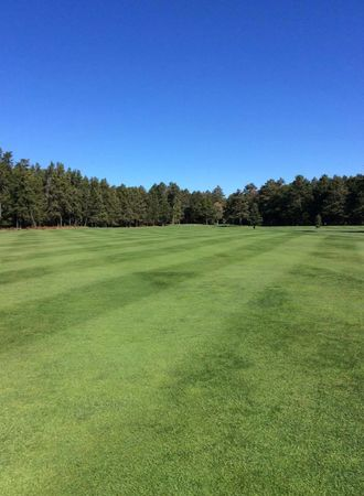 Forest Point Resort and Golf Course Cover Picture