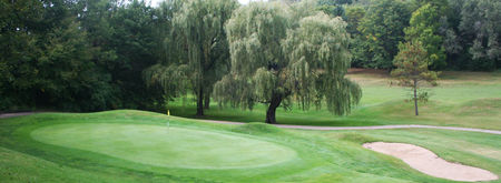 Forest Hills Public Golf Course Cover Picture