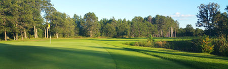 Black Bear Golf Club Cover Picture
