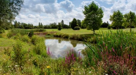 UGOLF Metz Cover Picture