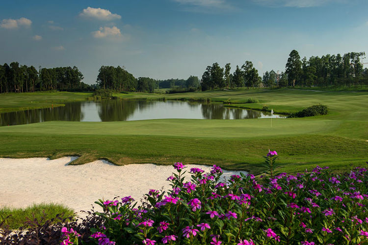 Foshan golf club cover picture