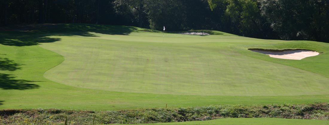 Auburn university golf club cover picture