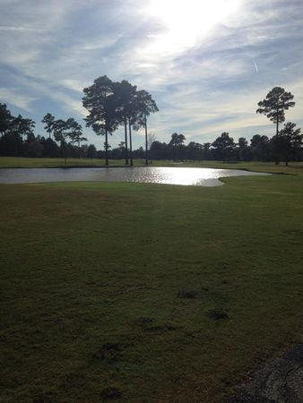 Coosa pines golf club cover picture