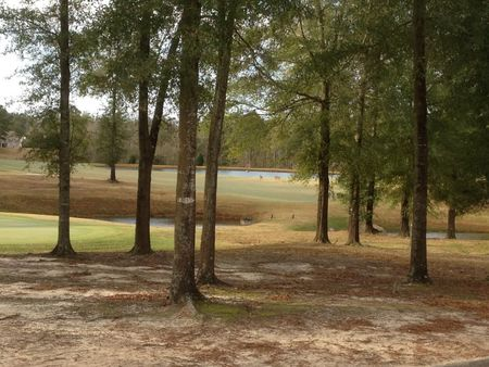 Tartan Pines Golf Course Cover Picture
