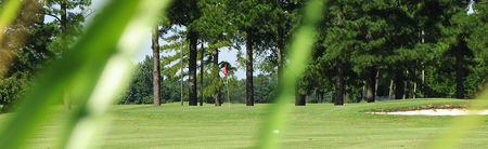 Cardinal creek golf course cover picture