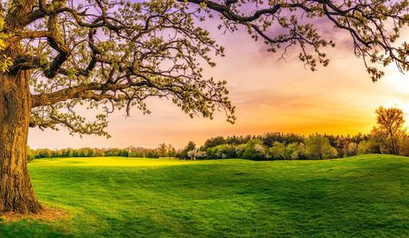 Stonewall Orchard Golf Club Cover Picture