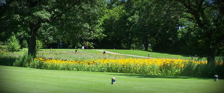 Overview of golf course named Village Greens of Woodridge