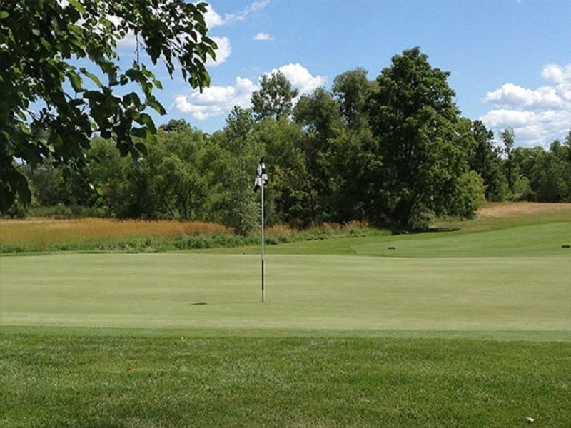 College fields golf club cover picture
