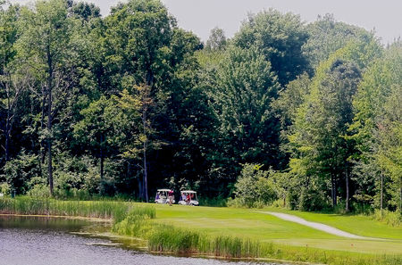 The timbers golf course cover picture