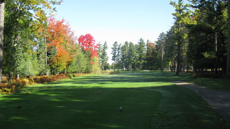 Overview of golf course named Grayling Country Club