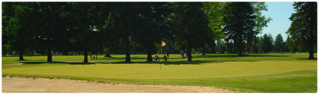 Pine view golf club cover picture