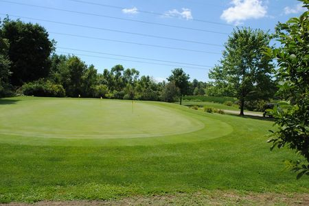 Golden hawk golf club cover picture