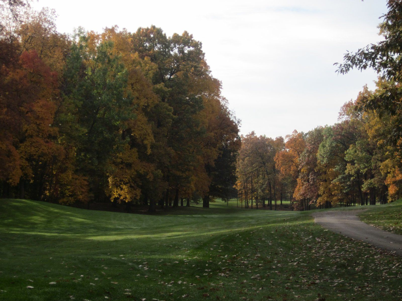 Chemung hills golf club cover picture