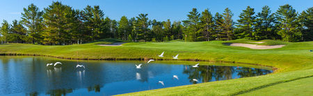 Charlevoix golf and country club cover picture