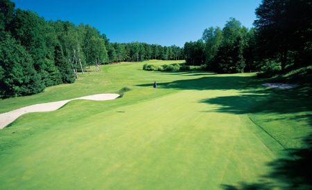 Thoroughbred golf club at double jj resort cover picture