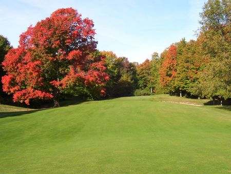 Chestnut hills golf course cover picture