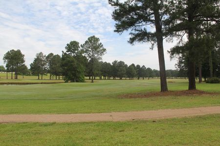 Live oaks golf club cover picture
