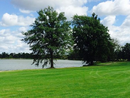 Mosswood meadows golf course cover picture