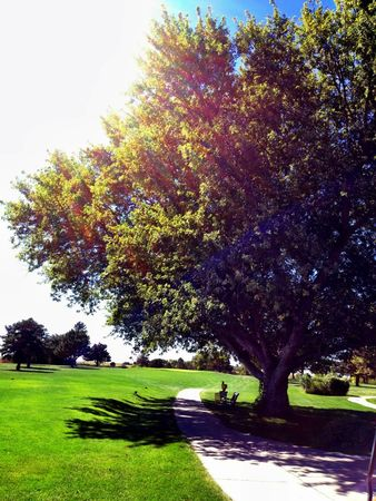Ryan Hill Country Club Cover Picture