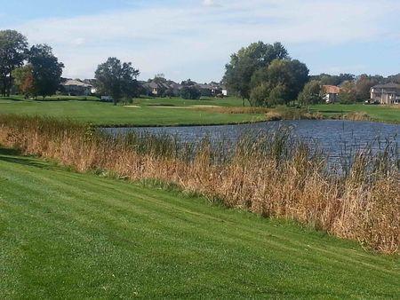 Tiburon golf club cover picture