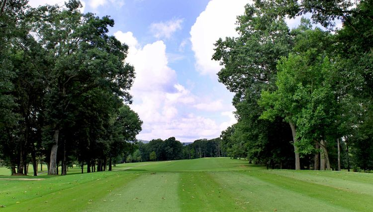 Brushy mountain golf course cover picture