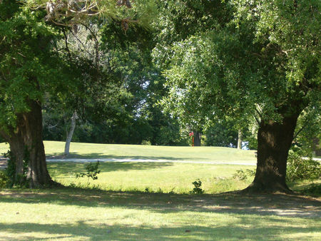 Carolina Pines Country Club Cover Picture