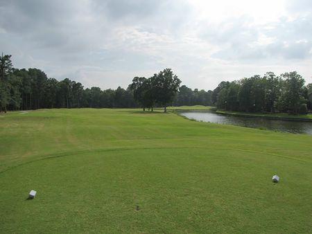 Emerald Golf Club Cover