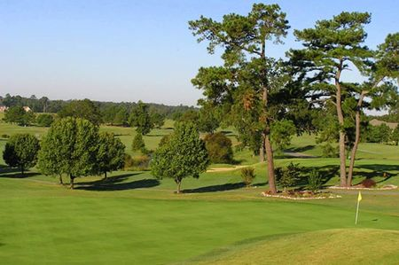 Lane Tree Golf Course Cover Picture