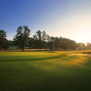 Pine needles lodge and golf club cover picture