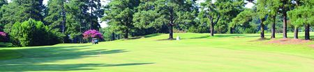 Overview of golf course named Raleigh Golf Association
