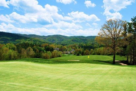 Overview of golf course named Reems Creek Golf Club