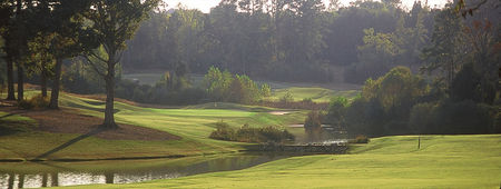 Overview of golf course named The Challenge Golf Club