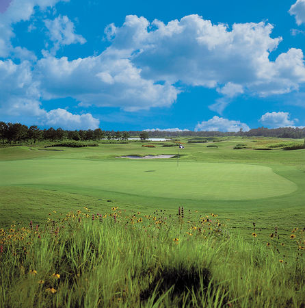 Thistle Golf Club Cover Picture