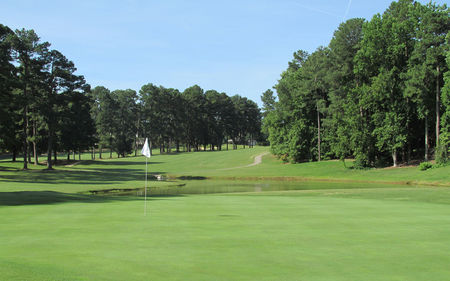 Wildwood Green Golf Club Cover Picture