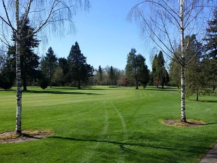 Albany golf and event center cover picture