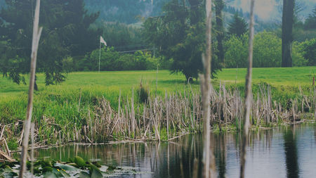 Bay Breeze Golf Course and Driving Range Cover Picture