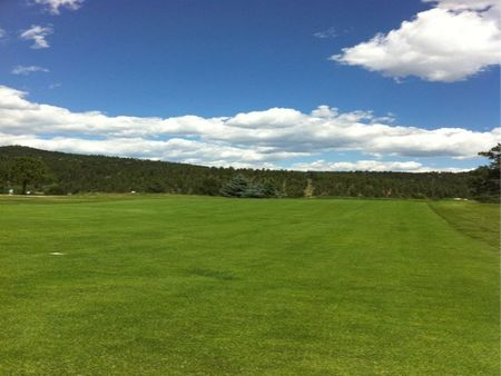 Evergreen Golf Club Cover Picture