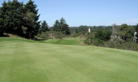 Overview of golf course named Manzanita Golf Course