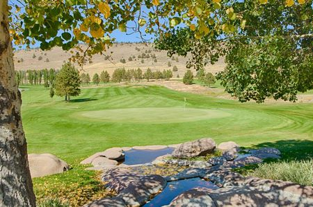 Shield crest golf course cover picture