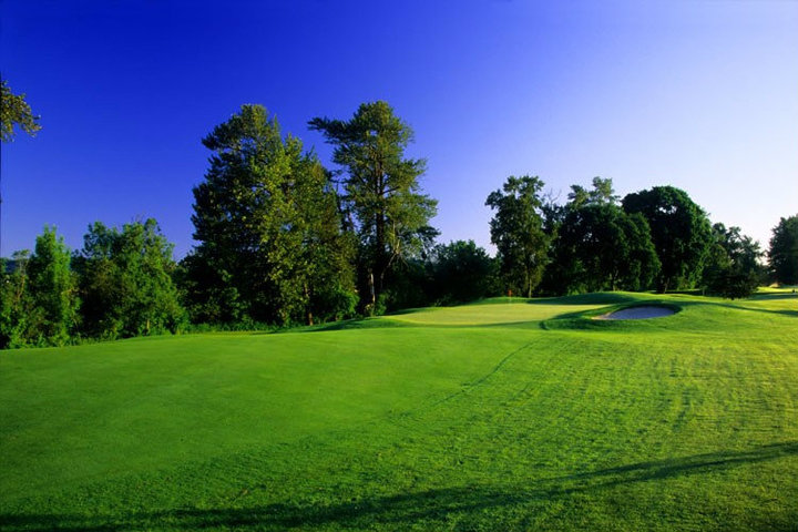 Overview of golf course named Trysting Tree Golf Club